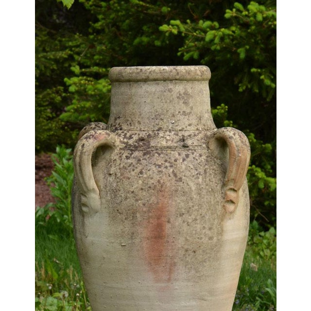 Olive Jar - Image 7 of 7