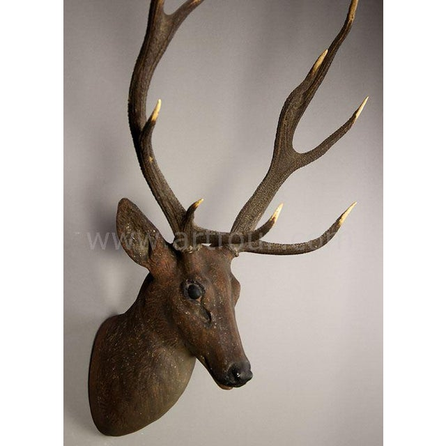 stag head, made of papier-mache, with real antlers (abnormal antlers). wooden back plate. executed ca. 1900. height head...