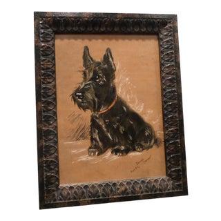 Portrait of a Scottish Terrier For Sale