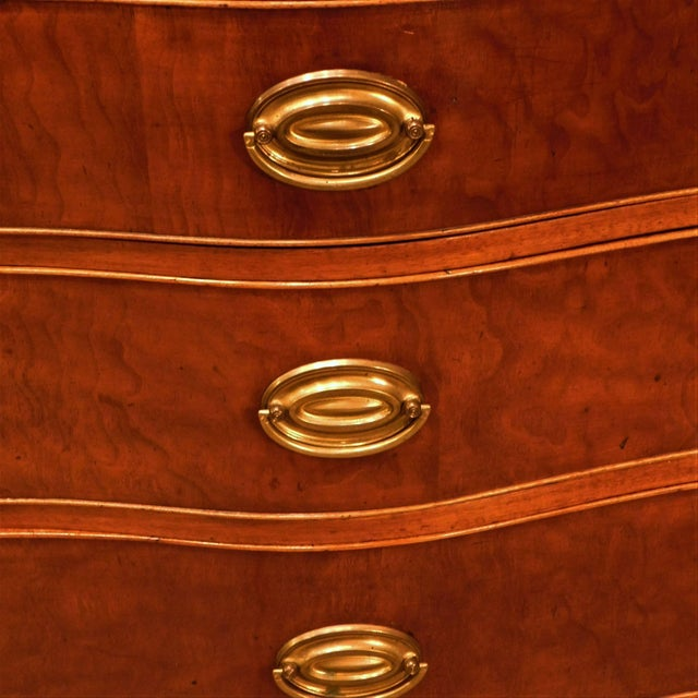 Late 18th Century Pollarded Walnut Oxbow Chippendale Fall-Front Desk, Massachusetts, circa 1780 For Sale - Image 5 of 13