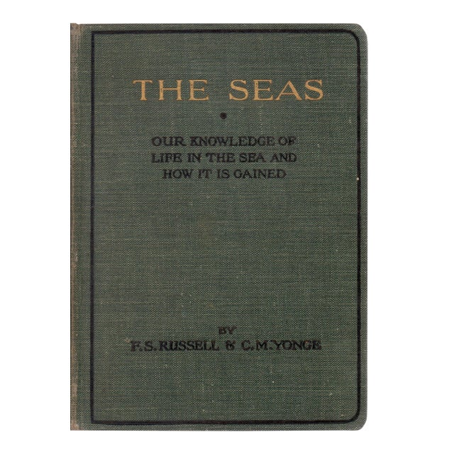 1928 The Seas Hardcover Book with Illustrations For Sale
