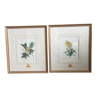 1990s Traditional Bontanical Prints - a Pair For Sale