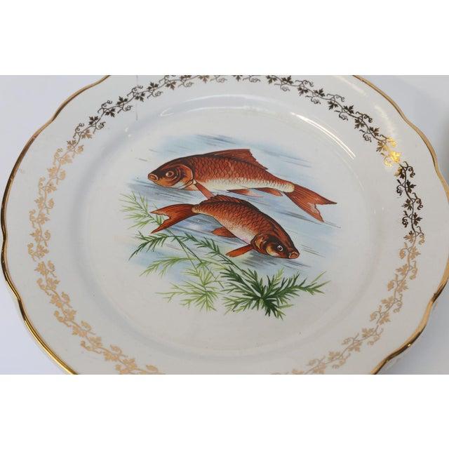 Digoin & Sarreguemines Set of Twelve Digoin and Sarreguemines Fish Plates For Sale - Image 4 of 9