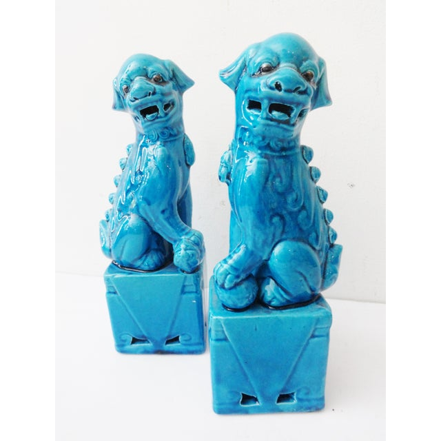 Turquoise Porcelain Foo Dogs - A Pair - Image 7 of 7