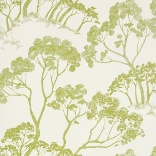 Sample - Schumacher Timber! Wallpaper in Leaf For Sale