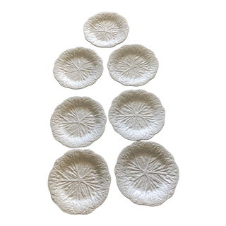 White Cabbage Dinner Plates - Set of 7 For Sale