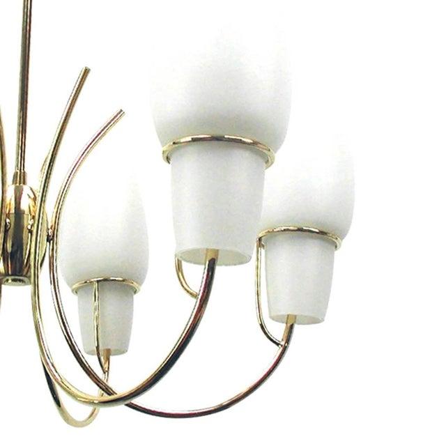 Italian 1950s Stilnovo Italian Opaline Glass Brass Chandelier For Sale - Image 3 of 8