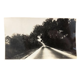 """Road Between Charleston and Savannah"" Photograph, 1930 For Sale"