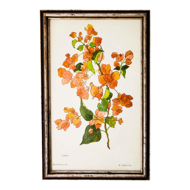 Vintage Floral Watercolor Painting For Sale