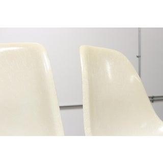 Vintage Mid Century Herman Miller Eames Eiffel Base Parchment Fiberglass Shell Chairs- A Pair Preview
