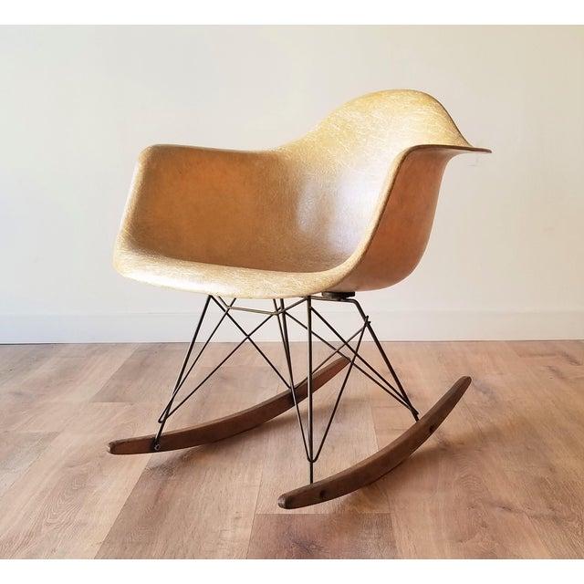 1960s Eames RAR Rocking Chair in Ochre Light for Herman Miller For Sale - Image 13 of 13