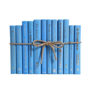 Modern Sky ColorPak : Decorative Books in Bright Blue For Sale