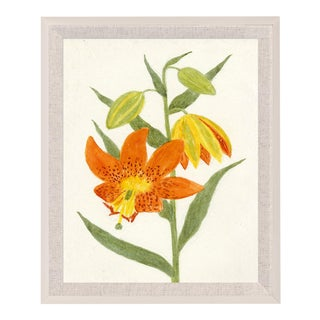 Hubbard Flower, Small: 8052 Artwork, Framed Artwork For Sale