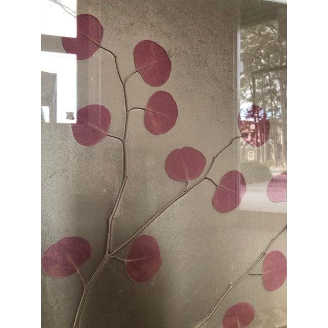 Organic Nature Pressing on Velvet, Framed For Sale - Image 4 of 6