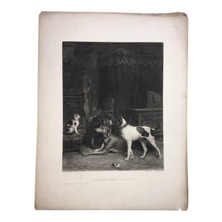 1883 Antique L E Lambert Dogs & Cat Lithograph Print For Sale