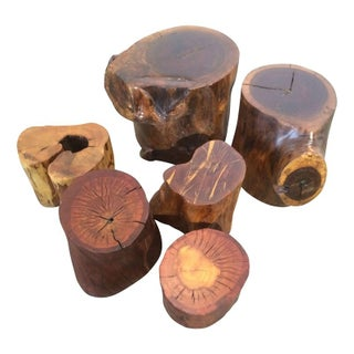 Wood Trunk Tables - Set of 6 For Sale