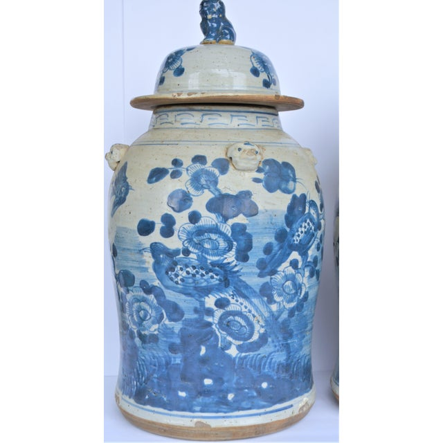 Chinoiserie White & Blue Baluster Temple With Birds / Ginger Jars - a Pair For Sale - Image 4 of 5