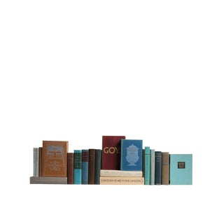 Art History: Set of Twenty Decorative Books