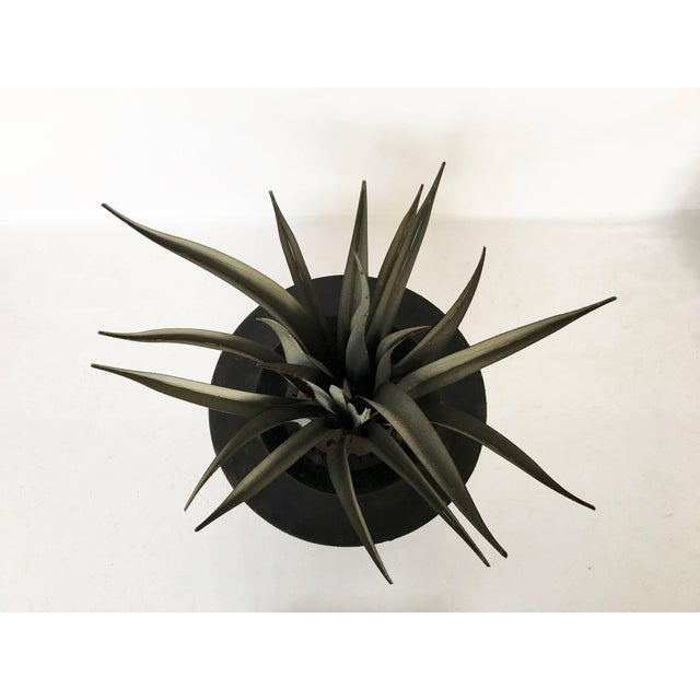 Gray Large Patinated Sculpture of a Plant For Sale - Image 8 of 9