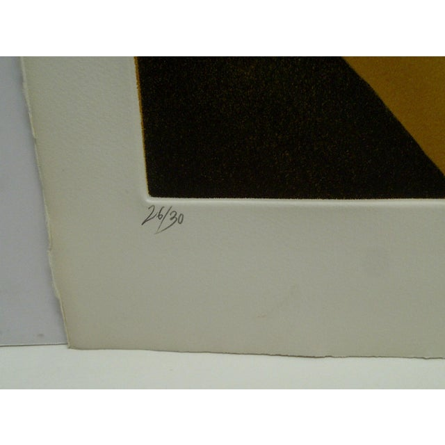 """Limited Edition -- Signed Numbered (26/50) Print -- Titled """"Topographic Agraire"""" -- by Donny For Sale In Pittsburgh - Image 6 of 9"""