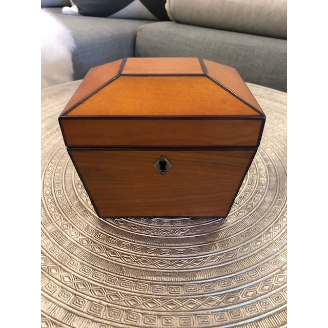 Global Views Yew Wood Box For Sale - Image 4 of 6