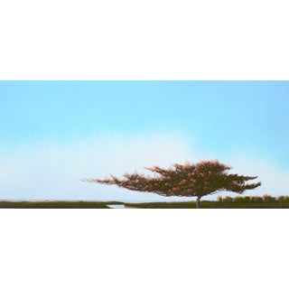 'Arbre Dans Les Dunes' by Robert Marchessault, 2019. For Sale