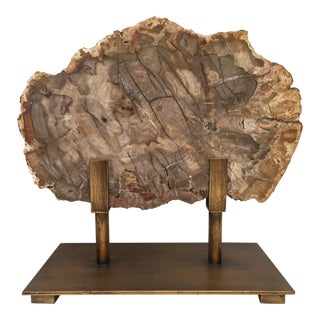 Petrified Wood Plate on Metal Museum Stand For Sale