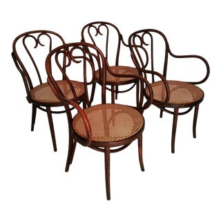1950s Vintage Poland Thonet Style Bentwood Dining Chairs - Set of 4 For Sale