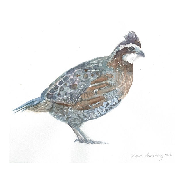 Northern Bobwhite Watercolor Painting - Image 1 of 2