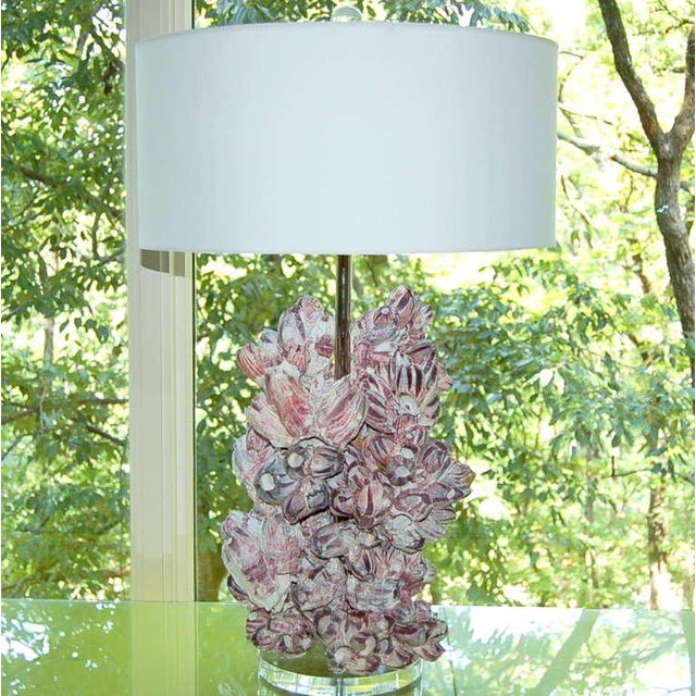 Artist sculpted Barnacle lamps, designed by Swank Lighting, full of whimsy and style. Wonderfully textured, with shots of...