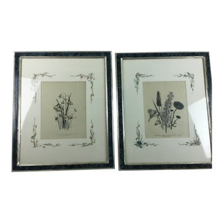 English Botanical Water Color Silhouette Framed Prints by Julia Winship - a Pair For Sale