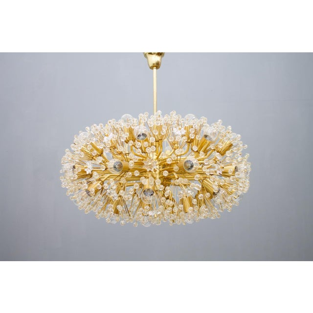 Glass Huge Brass and Glass Chandelier, 1960s For Sale - Image 7 of 7