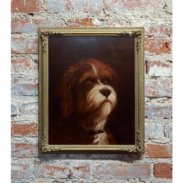 19th Century Portrait of a Fluffy Dog - Oil Painting For Sale - Image 11 of 11