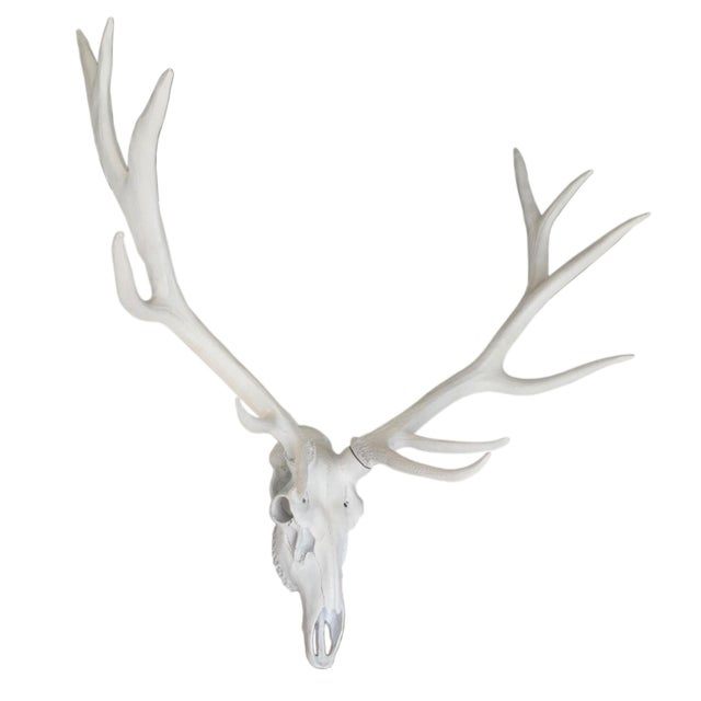 Contemporary Resin Stag Skull Wall Decor, White For Sale - Image 3 of 6