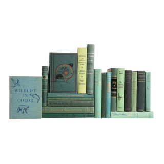 The Vintage Outdoors - Set of Twenty Decorative Books
