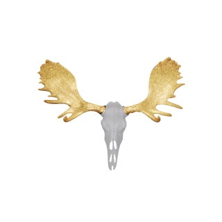 Wall Charmers Alberta White + Gold Antlers Resin Moose Head Skull