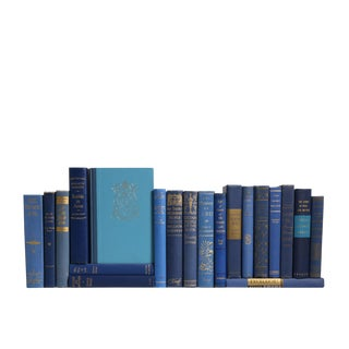 Mid-Century Blue Gilted Decorative Books - Set of 20