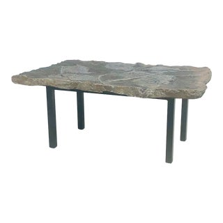 Crinoid Fossil Coffee Table For Sale
