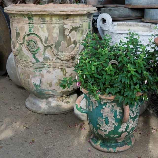 19th Century Grand Anduze Jars For Sale - Image 12 of 13