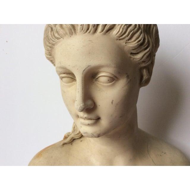 Decorative Proserpina Bust - Image 7 of 10