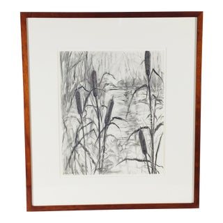 Pencil Drawing by Mary B Lynch For Sale