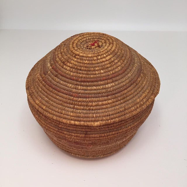 Northwest Coast Salish Lidded Coiled Basket For Sale - Image 12 of 13