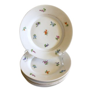 Continental Set of 5 Plates