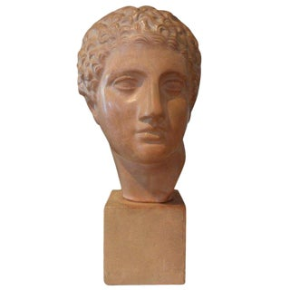 French Classical Roman Male Terra Cotta Bust Sculpture For Sale