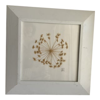 Sweet Natural Pressed Floral Framed Wall Art For Sale