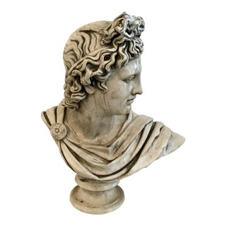 Belvedere Marble Bust For Sale