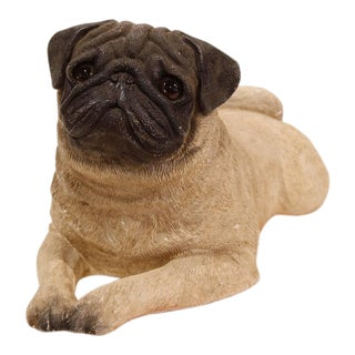 Early 20th Century French Terracotta Pug Puppy With Glass Eyes For Sale