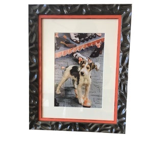 1930's Vintage Framed Terrier Dog With Shoes Photograph by Nikolas Muray
