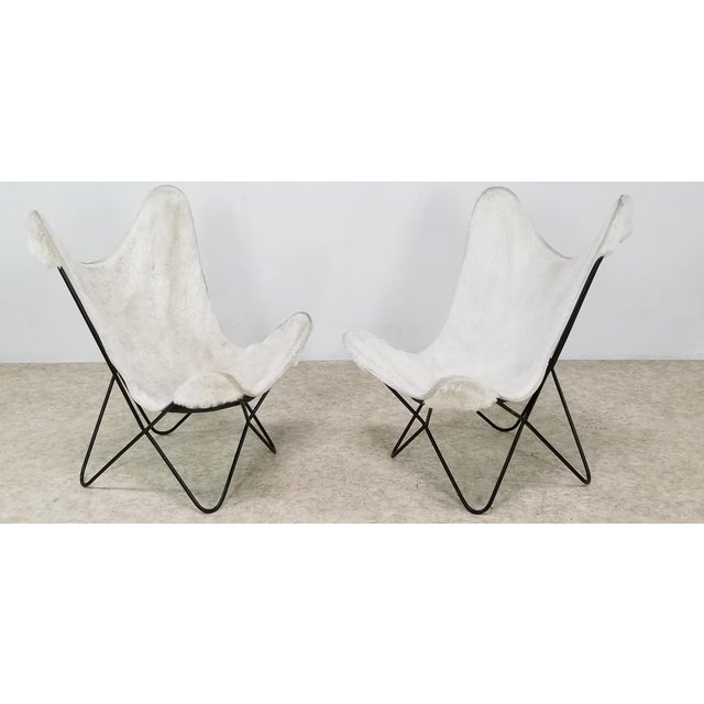These Knoll Butterflies chairs have a solid construction of wrought iron frame. Excellent condition. Come with faux...
