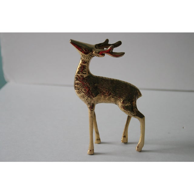English Traditional Vintage Brass Deer - A Pair For Sale - Image 3 of 4